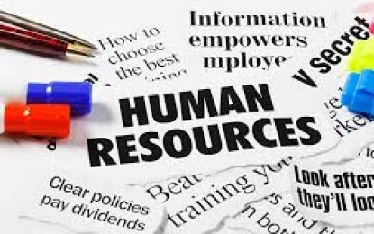 HUMAN RESOURCE AUDIT